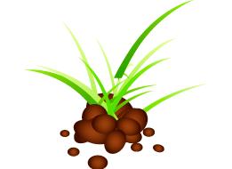 Optimización de la fertilidad y rendimiento del terreno. Redondo Izal