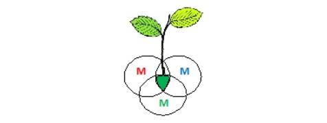 jesus-alberto-garcia-gallardo-logo